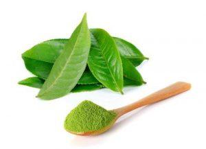 Điều trị viêm cổ tử cung bằng lá trà xanh